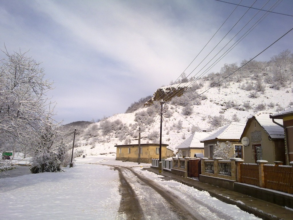 21. kép - Téli takaró