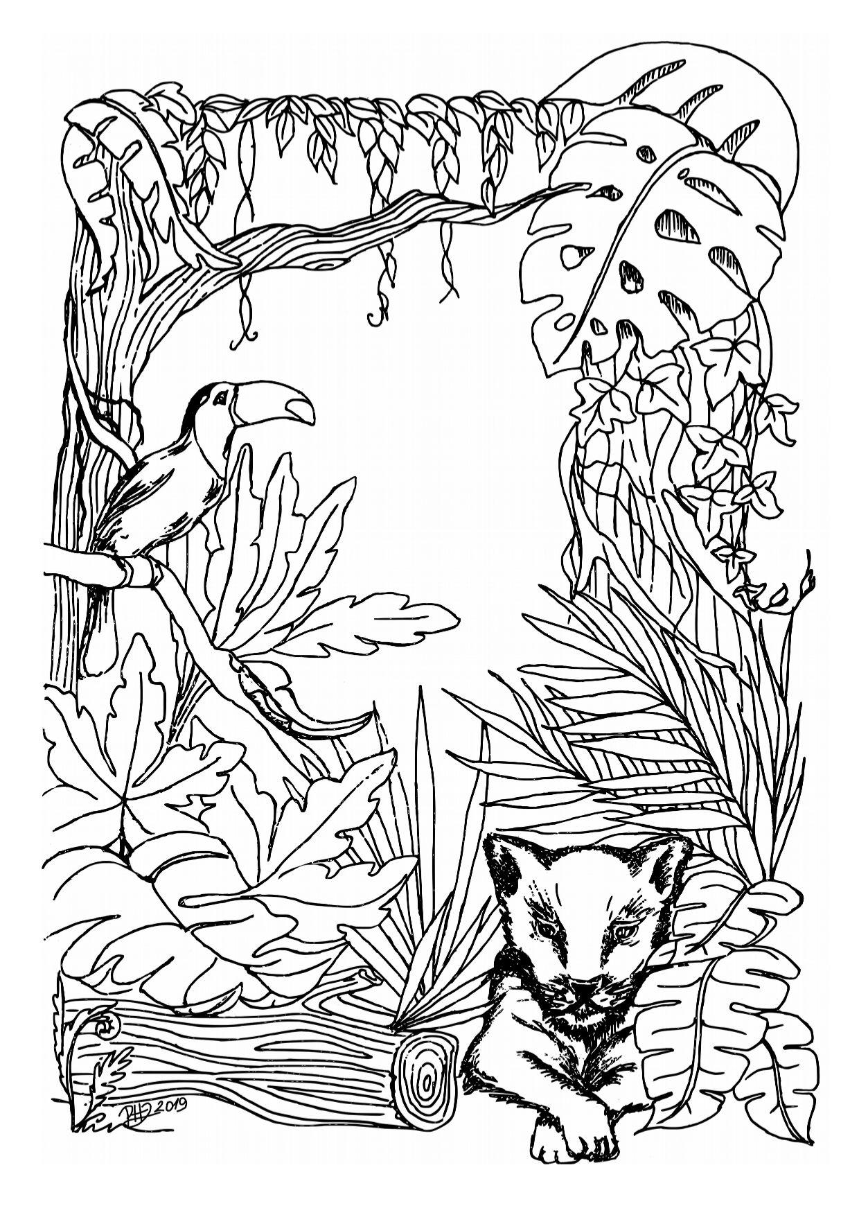 Esőerdő-kifestő-1